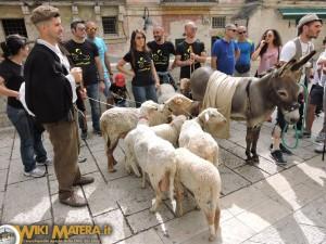 festa della bruna2017 processione dei pastori matera wikimatera 00051
