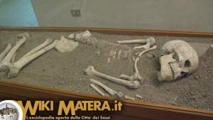museo_archeologico_nazionale_domenico_ridola_matera_9